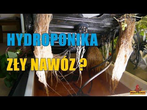 Jakiego nawozu nie używać w Hydroponice