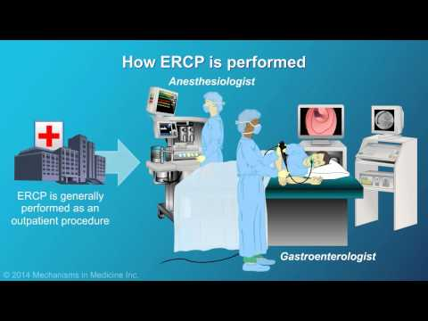 Understanding ERCP (Endoscopic Retrograde Cholangiopancreatography)