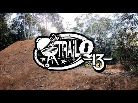 TRAIL Q13