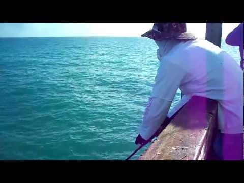 Spanish Mackerel fishing on artificials