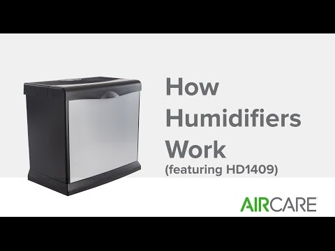 How Humidifiers Work (featuring HD1409)
