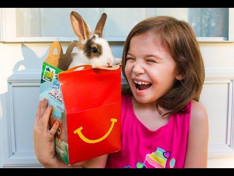 Baby Bunnies + McDonald's Happy Meal Toys + Kid's Trip to PetSmart Documentary Family Vlog