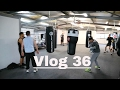Download MMA Vlog 36 - Peaks & Troughs MP3,3GP,MP4