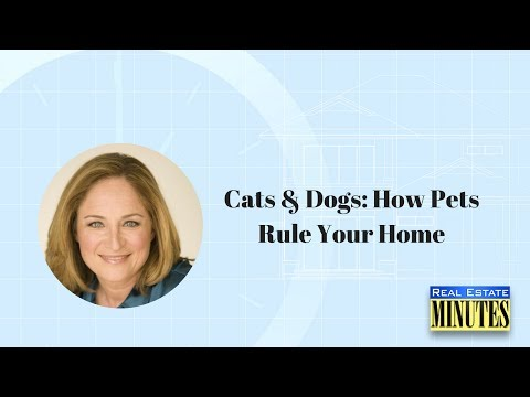 Cats & Dogs: How Pets Rule Your Home