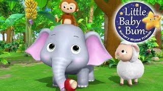 Yum Yum! Animals Feeding Song   Nursery Rhymes   Original Kids Songs By LittleBabyBum!