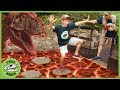 T Rex Dinosaur amp Floor Is Lava Pretend Play Escape With Dinosaurs At Gulliver39s Park For Kids
