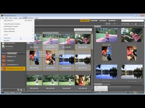 Bridge CC Export Using Image Processor