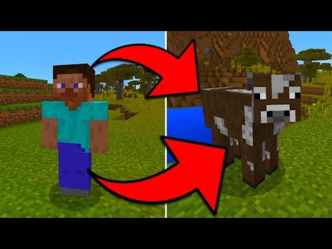 How To Turn into Any Mob in Minecraft Pocket Edition without Mods