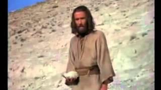 Vida Pública de Jesús Pate2