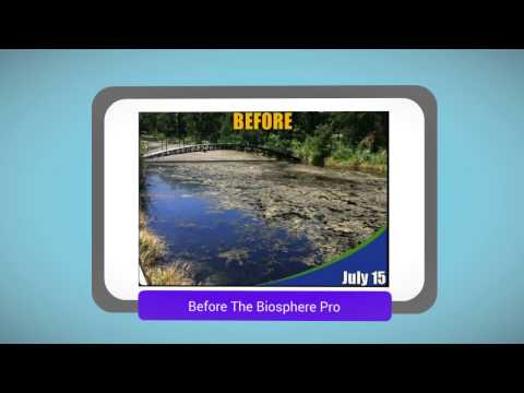The Biosphere Pro Natural Pond Cleaner