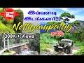 Download           Nelliyampathy | Nelliyampathy Tourist Places | Tamil Travel Vlog | Palakkad Tourism | Tamil Trip MP3,3GP,MP4