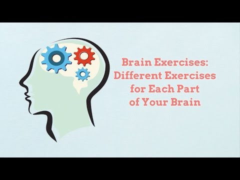Brain Exercises: Different Exercises for Each Part of Your Brain