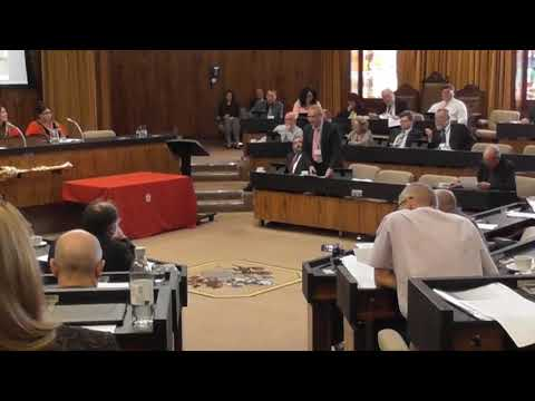 Gateshead Full Council 24 May 2018 - Permission in Principle