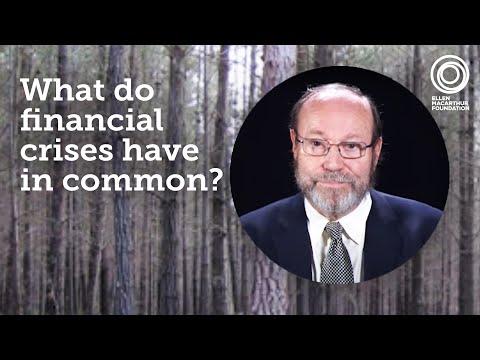 Bernard Lietaer - The potential of complementary currencies