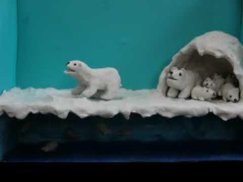 Andeigh's Polar Bear Project