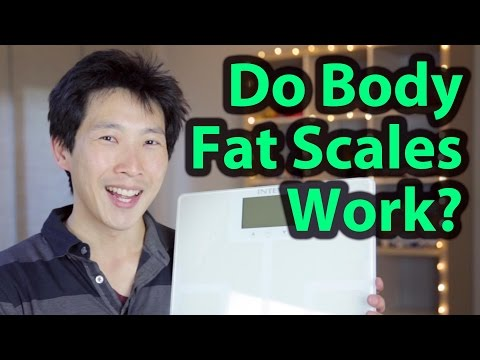 Does a Body Fat Scale Really Work | BeatTheBush
