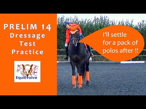 Prelim 14 Dressage Test Learning Tool