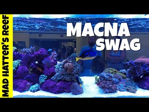 My MACNA Swag | Aquarium Gear, Corals and a Fish Tank