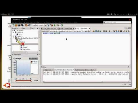 Java demo connect to database Derby with NETBEANS