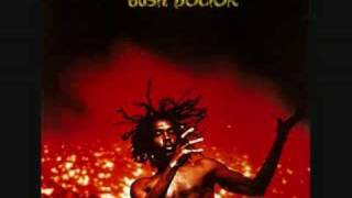 Download Peter Tosh - Pick Myself Up