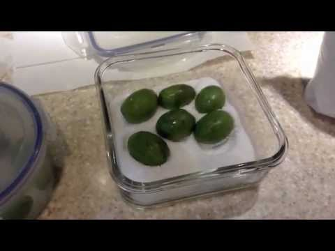 Curing Olives (From the Golf Course)