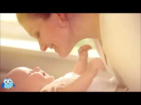 Lactation bar and smoothie for breastfeeding protein boost milk supply 1