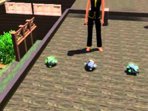 The Sims 3 where to find the Rainbow Gem