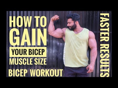 HOW TO GAIN YOUR BICEP MUSCLE SIZE   BICEP WORKOUT FOR MASS  ADD INCHES TO YOUR BICEPS