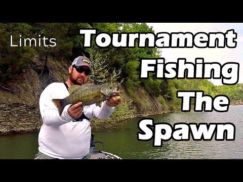 Tournament Fishing the Spawn - Cumberland Lake - Limits