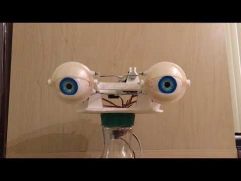 Animatronic Eye Mechanism