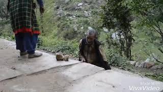 Himachali old man dance