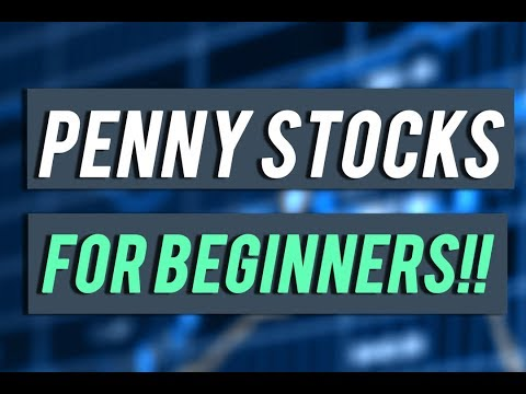 How To Trade Penny Stocks The Right Way: PART 1 (Make $300)