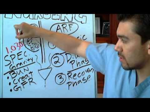 Acute Renal Failure: BUN & Creatinine interpretation
