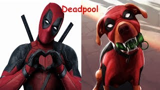 Superheroes In Real Life As Dogs 2017 | Teen Titans Go In Real Life | Young Justice In Real Life
