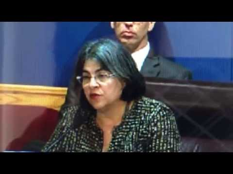 Daniella Levine Cava at Zoning Meeting Part 2 11/20/2014 - Discussion and Vote