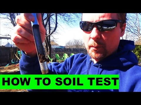 How to do a soil test