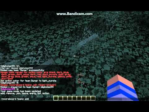 How to have ranks on a minecraft server without a plugin