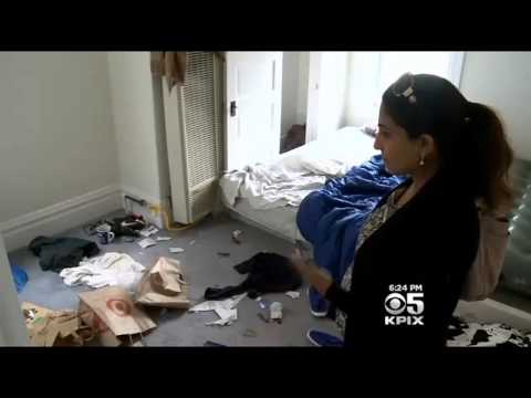 CBS San Francisco - Irish students trash SF rental house then leave country (9/19/14)