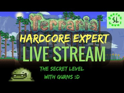 Terraria HARDCORE EXPERT Live Stream | Part 17 Hell, Queen Bee & Skeletron!