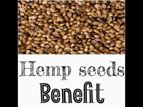 hemp seeds benefits in hindi
