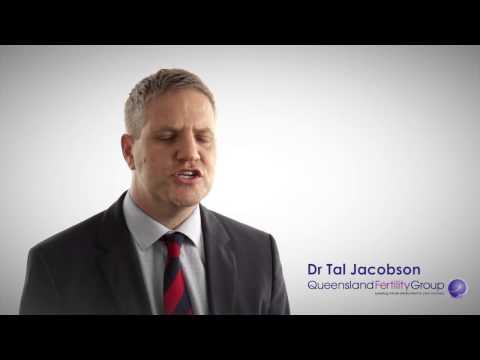 Dr Tal Jacobson, Qld Fertility Group