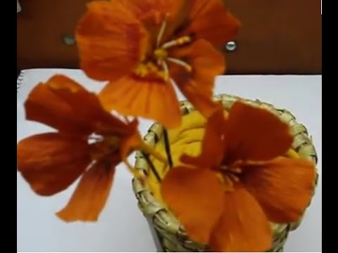 How to make Paper Flowers Nasturtium / Tropaeolum (Flower # 23)