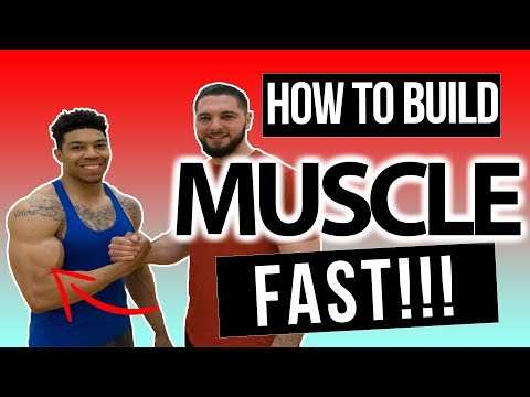 Muscle Building Tips: How to Build Muscle Fast with Starmade Rich