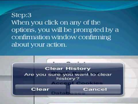 how to clear history in safari iPad?