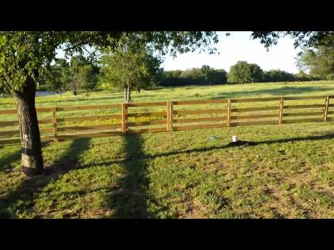 Post-and-Rail-Horse-Fence Ranch Fence in Coweta