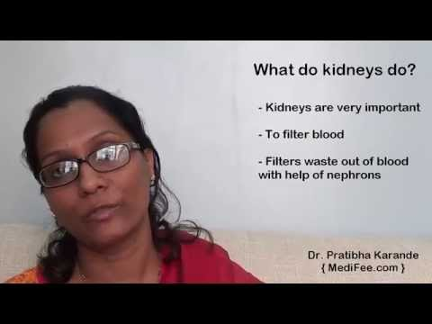 Renal Profile - Routine Kidney Function Blood Tests