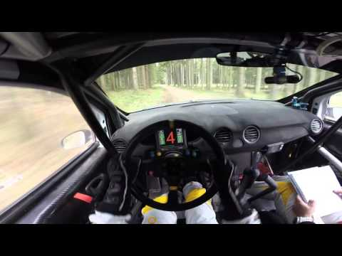 INSANE Rally Race Driver POV - Flat out Inbetween trees