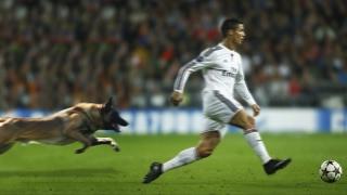Comedy Football ● FUNNIEST FOOTBALL MOMENTS!!!