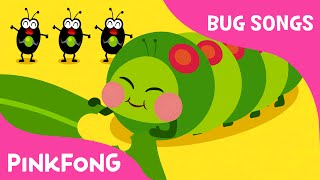 Hungry Caterpillars | Bug Songs | PINKFONG Songs