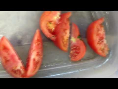Turatti WEDGE CUTTER video demo, Y3099